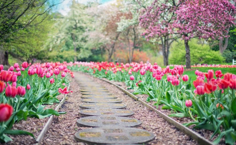 It's time to spring into construction and landscaping season